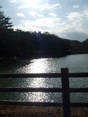 Hizashi