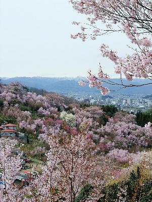 Fukushimashi