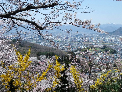 Hanamiyama201106