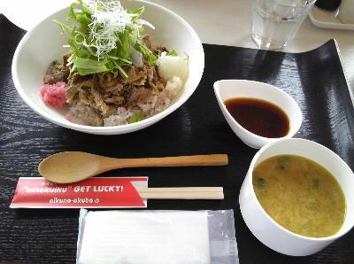 Inawashiro05