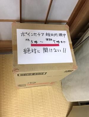 Tanjitsu